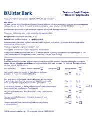 Business Credit Review Borrower Application - Ulster Bank