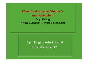 A MÖFÖSZ szervezésében Eger Polgármesteri Hivatalában, 2012 ...