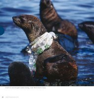 Plastic Debris in the Ocean - UNEP