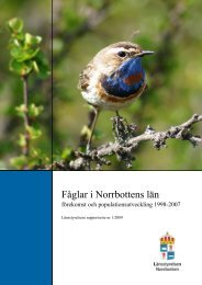 Fåglar i Norrbottens län - Forskning - Lunds universitet