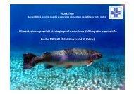 possibili strategie per la riduzione dell'impatto ambientale - SIPI