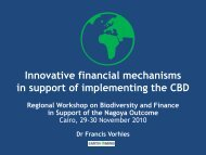 Innovative financial mechanisms in support of implementing ... - GDI
