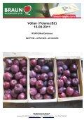 download Fotomappe - KIKU - Page 6