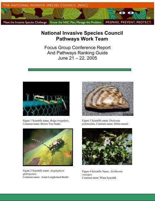 National Invasive Species Council Pathways Work Team - New York ...
