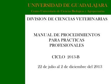 Manual de Procedimientos - Centro Universitario de Ciencias ...