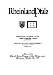 Jahresbericht über die Durchführung des Ziel 2-Programms ...