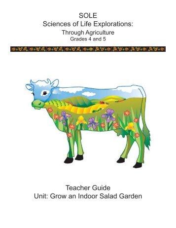 Grow an Indoor Salad Garden - Agriculture in the Classroom