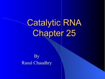 Catalytic RNA Chapter 25