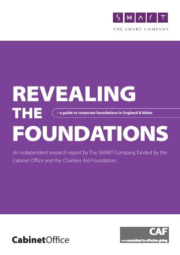 Download Revealing the Foundations - Charities Aid Foundation