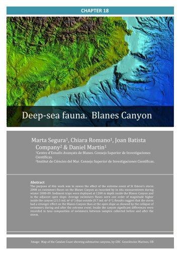 PDF article - Consejo Superior de Investigaciones Científicas