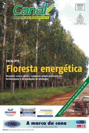 04 kátia abreu - Canal : O jornal da bioenergia