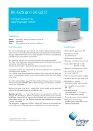 BK-G25 EN03 data sheet, 07.01.2009 - UK Metering