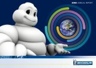 MICHELIN - 2008 ANNUAL REPORT