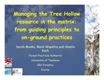 Managing the Tree Hollow resource in the matrix: from guiding ...