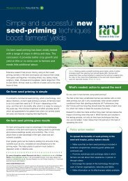new seed-priming techniques boost farmers - Research Into Use