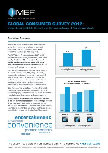 MEF Global Consumer Survey