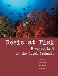Reefs at Risk Revisited in the Coral Triangle