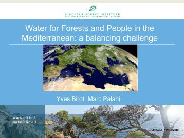 Yves Birot_Mediterranean.pdf - Forest Management and the Water ...