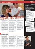 Hvad er survey? - Region Midtjylland - Page 3