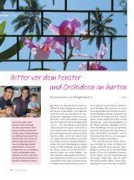 Gitter vor dem Fenster und Orchideen im Garten - Ethos