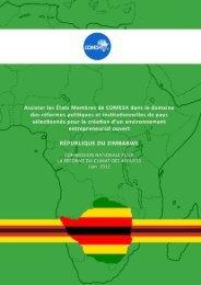 Assister les États Membres de COMESA dans le domaine des ...