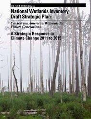 National Wetlands Inventory Draft Strategic Plan: - Department of ...