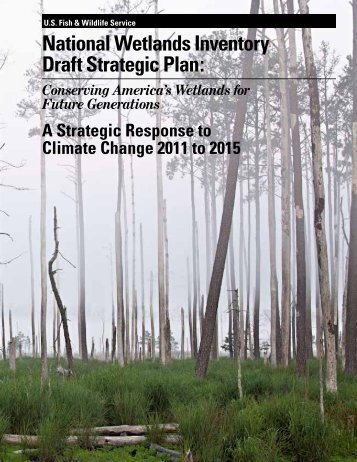 National Wetlands Inventory Draft Strategic Plan: - Department of ...
