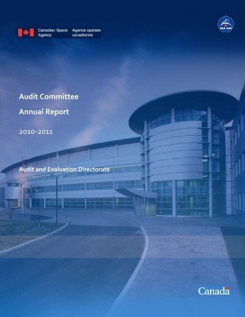 Audit Committee Annual Report 2010-2011