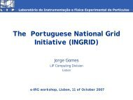 National Grid Initiative - e-Infrastructure Reflection Group - e-IRG