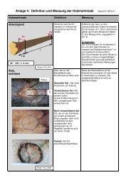 Definition und Messung der Holzmerkmale - Wald und Holz NRW