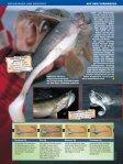Vormarsch - Raubfisch - Seite 5