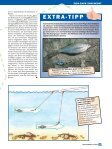 Zick-Zack zum Hecht - Raubfisch - Seite 4