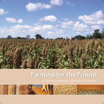 A Guide to Conservation Agriculture in Zimbabwe - Canadian ...