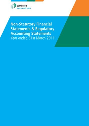 Non-Statutory Financial Statements & Regulatory Accounting ...