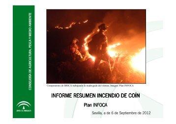 Presentación Informe resumen incendio de Coín_06092012