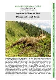 Gamsjagd in Slowenien 2010 Staatsrevier ... - Westfalia Jagdreisen