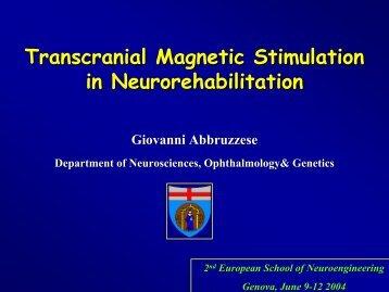 Transcranial Magnetic Stimulation in Neurorehabilitation