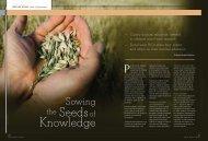 Download Article (PDF) - George Warren Brown School of Social Work