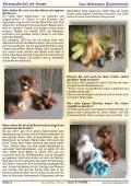 dase - paper - Lombard Bears  Australia - Seite 5