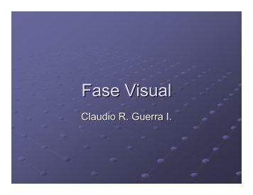 Fase Visual - Trekkingchile.com
