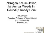 Nitrogen Accumulation by Annual Weeds in Roundup Ready Corn