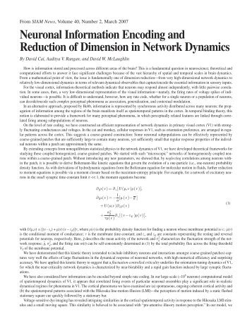 Neuronal Information Encoding and Reduction of Dimension in ...