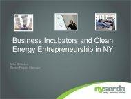 Business Incubators and Clean Energy Entrepreneurship in New York