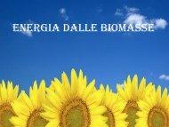 Energia dalla biomasse - Itisfocaccia.it
