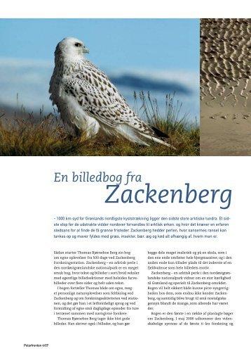 En billedbog fra Zackenberg