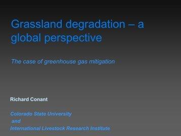 Grassland degradation