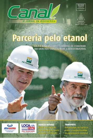 Brasil tem mais de 200 oleaginosas para produzir o biodiesel Brasil ...