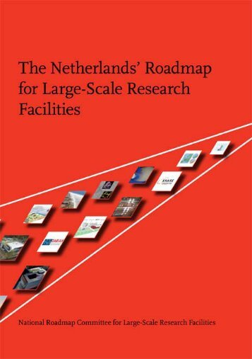 Netherland's Roadmap 2009 - Neuron at tau