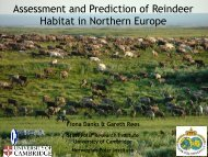 Assessment and Prediction of Reindeer Habitat in Northern Europe
