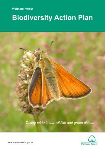 Biodiversity Action Plan - Waltham Forest Council
